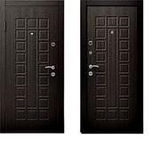 Двери металлические  Русский Стандарт