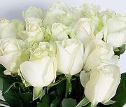 Розы оптом по доступным ценам